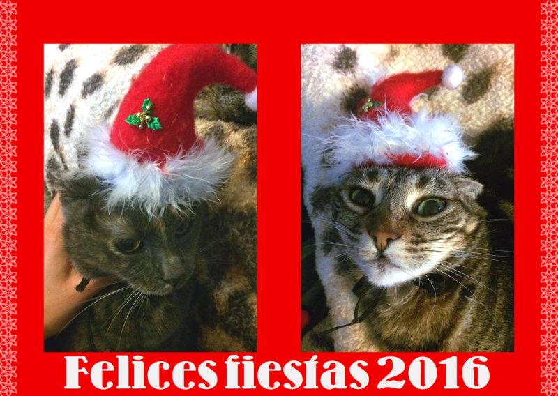 felices-fiestas-2016-gauno