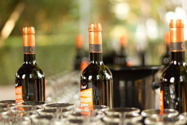 Vinos Bodegas Vihucas